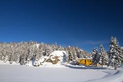 Rocío bajo nieve Imágenes de archivo libres de regalías
