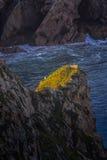 Roca,葡萄牙大西洋海岸海角的一位孤立渔夫  免版税图库摄影