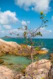 Roca, árbol y mar hermosos con el cielo azul Foto de archivo libre de regalías