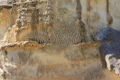 Roca alveolada Imágenes de archivo libres de regalías