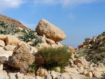 Roca amarilla en la cuesta de la colina en desierto en primavera Fotografía de archivo libre de regalías