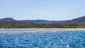 Roca Bruja海滩,哥斯达黎加 免版税库存照片