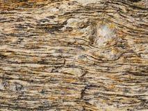 Roca colorida del gneis - fondo/modelo gráficos Fotos de archivo libres de regalías