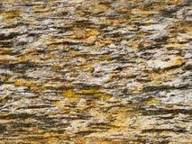 Roca colorida del gneis - fondo o modelo gráfico Fotos de archivo libres de regalías