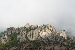 Roca con los árboles Fotografía de archivo libre de regalías
