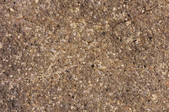 Roca con textura de las cáscaras Foto de archivo