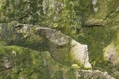 Roca cubierta de musgo de la piedra caliza del fondo Foto de archivo