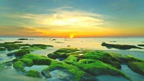 Roca cubierta de musgo hermosa Imagen de archivo