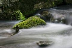 Roca cubierta de musgo verde en el río Exposición larga Foto de archivo