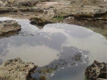 Roca de la hierba de la playa de la naturaleza Foto de archivo