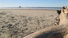 Roca de la pirámide, sol de la costa de Oregon, Estados Unidos almacen de video