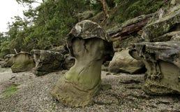 Roca de la seta en el puerto de Montague, isla de Galiano canadá foto de archivo