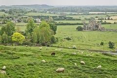Roca de los paisajes de Cashel - Irlanda Foto de archivo libre de regalías