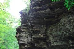 Roca de piedra del  de Ð pequeña en bosque imágenes de archivo libres de regalías