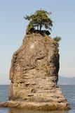 Roca de Siwash de Stanley Park Imágenes de archivo libres de regalías