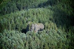 Roca de Solitairy en bosque Fotografía de archivo