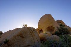 Roca del cráneo Fotos de archivo libres de regalías