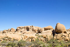 Roca del cráneo dentro de Joshua Tree National Park Fotos de archivo
