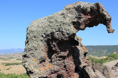 Roca del elefante Fotografía de archivo