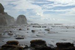 Roca del elefante en niebla del océano Imagen de archivo