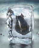 Roca del hielo y bomba atómica Fotografía de archivo