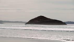 Roca del incinerador que practica surf, Long Beach 4K UHD almacen de metraje de vídeo