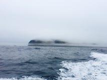 Roca del skellig de Skellig Michael, Irlanda Imágenes de archivo libres de regalías