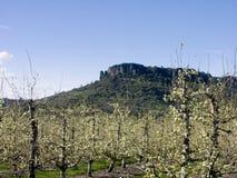 Roca del vector, Medford, Oregon Imagenes de archivo