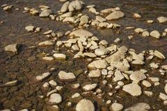 Roca en el agua poco profunda Imagenes de archivo