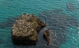 Roca en el mar andaluz Agua azul clara del mar Mediterráneo Fotografía de archivo