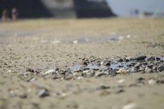 Roca en la arena Imagen de archivo libre de regalías