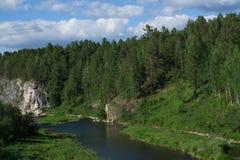 Roca entre el bosque denso Foto de archivo libre de regalías