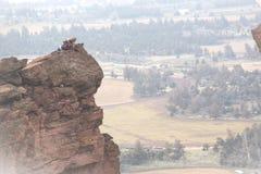 Roca-escalador en el borde fotografía de archivo