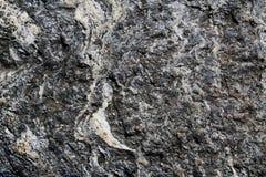 Roca metamórfica del esquisto del grado con las venas blancas fotografía de archivo libre de regalías