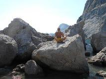 Roca, naturaleza, mar, animal, agua, cielo, montaña, piedra, azul, rocas, fauna, paisaje, salvaje, verano, playa, costa, mamífero Fotografía de archivo