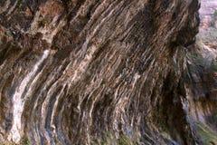 Roca que llora, Zion National Park Fotografía de archivo