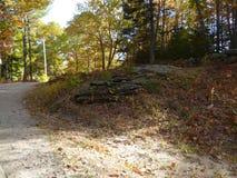 Roca que resalta con las hojas muertas imagen de archivo