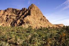 Roca que sube sobre el oasis de Tinghir Fotografía de archivo