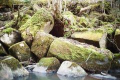 Roca quebrada en el banco de la corriente Piedras naturales fotos de archivo