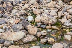 Roca redonda en el río Foto de archivo