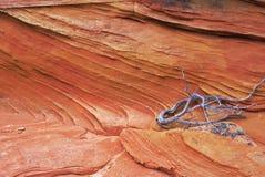 Roca roja Foto de archivo libre de regalías