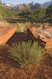 Roca sabia y roja Imagen de archivo