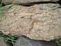 Roca sedimentaria Imágenes de archivo libres de regalías