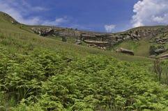 Roca sedimentaria interesante en el castillo de Giants foto de archivo libre de regalías