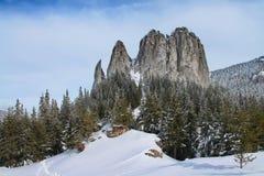 Roca sola, Cárpatos, Rumania Fotos de archivo
