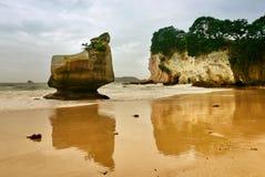 Roca sonriente de la esfinge en la península de Coromandel Fotografía de archivo