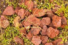 Roca volcánica roja Foto de archivo