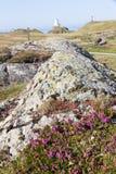 Roca volcánica y reliquias Imagenes de archivo