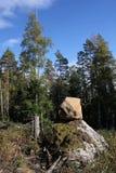 Roca y árbol Imagen de archivo libre de regalías