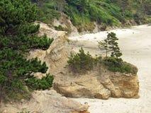 Roca y árboles en línea de la playa Fotografía de archivo